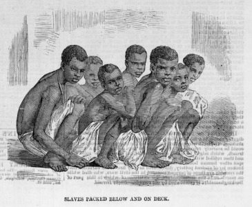 Africans Packed into a Slave Ship, 1857