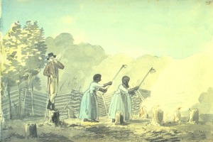 Cultivating Tobacco, Virginia, 1798