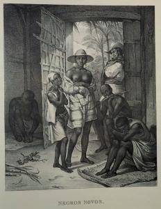 Johann Moritz Rugendas (Newly Enslaved Africans, Brazil, 1830s