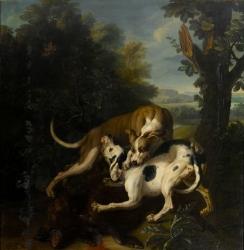 Desportes - Combat de deux chiens autour de la dépouille d'un sanglier - XVIIIe siècle - (C) RMN-Grand Palais (Château de Fontainebleau).jpg