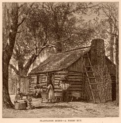 plantation scène.jpg